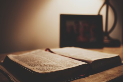 OGŁOSZENIA DUSZPASTERSKIE  XVI Niedziela Zwykła